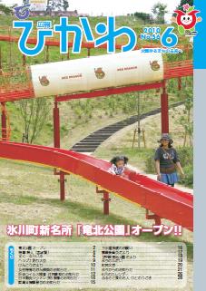 広報ひかわ2010年6月号